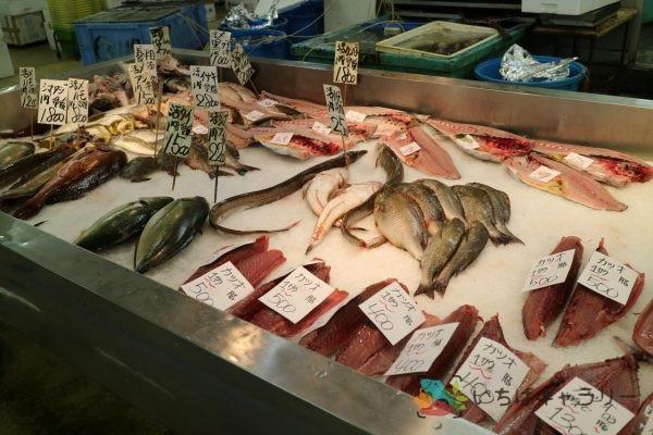 鮮魚仲卸、小売り(冷凍販売のみ)